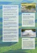 Økologisk fisk fra Danmark - Fugl og Fisk - Page 2