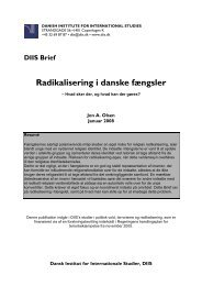 Radikalisering i danske fængsler - DIIS