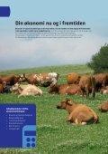 Uvildig rådgivning for alle - Djursland Landboforening - Page 4