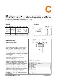 Matematik – naturvidenskaben om Mange