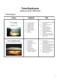 Naturfagskanon udskoling - Skoleporten Hellerup Skole