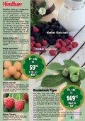 Sensommeren/efteråret er den helt rigtige plantetid... Når ... - Callnet - Page 3