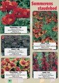 Sensommeren/efteråret er den helt rigtige plantetid... Når ... - Callnet - Page 6
