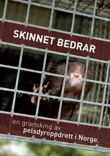 Skinnet bedrar - Dyrebeskyttelsen Norge