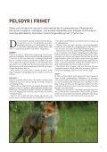 Skinnet bedrar - Dyrebeskyttelsen Norge - Page 5