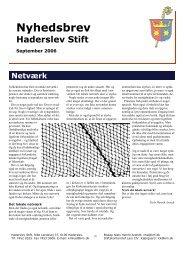 Se her - Haderslev Stift