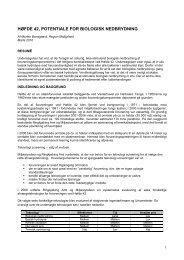 høfde 42, potentiale for biologisk nedbrydning - NorthPestClean