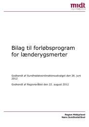 Bilag til forløbsprogram for lænderygsmerter - Randers Kommune