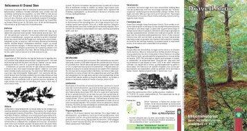 Draved skov, informations brochure - GEUS