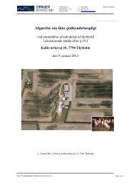 afgørelse efter § 19 f - fulde stalde - Struer kommune