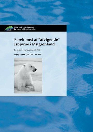 """Forekomst af """"afvigende"""" isbjørne i Østgrønland - DCE - Nationalt ..."""