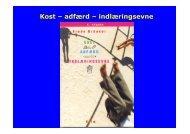 Foredrag af Frede - Hadsund Skole