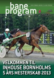 Baneprogram for 18. juni 2013 - Bornholms Brand Park