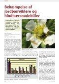 Frugt og Grønt Juni 2009 - Gartneribladene - Page 6