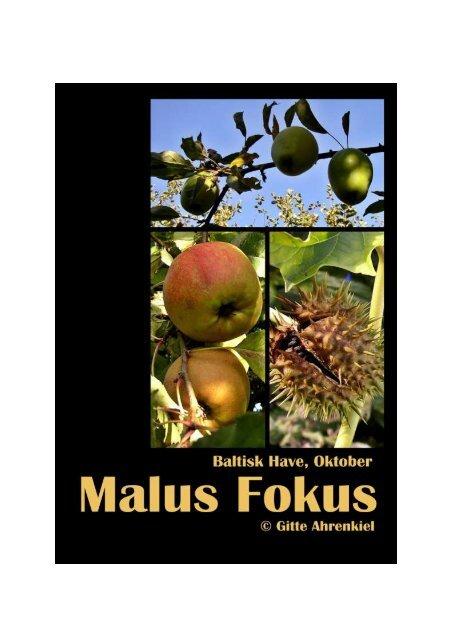 Baltisk Have - Oktober 2012 - VIPs Portal