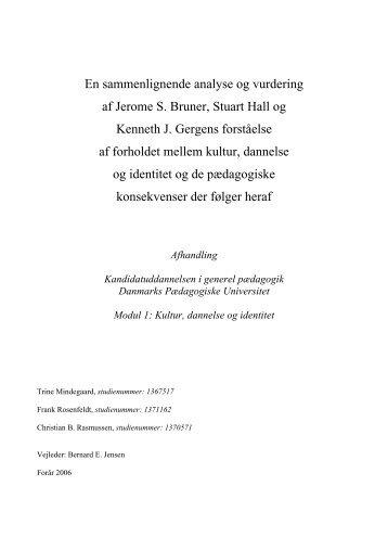 En sammenlignende analyse og vurdering - birgerrasmussen . dk