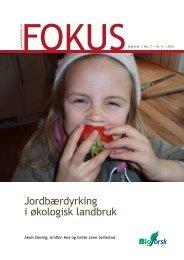 Jordbærdyrking i økologisk landbruk - Agropub