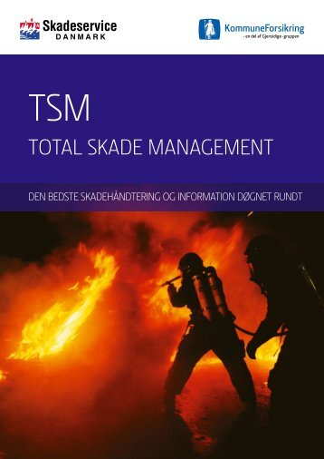 total skaDe management - Gjensidige