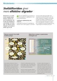 Side 17-20: Stofskifteviden giver mere effektive afgrøder