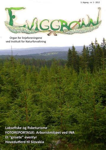 Eviggrønn nr 1 2012 - UMB