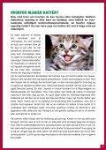Klikk på bildet eller denne lenken. - Kattens Vern - Page 7