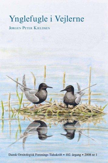 Ynglefugle i Vejlerne - Dansk Ornitologisk Forening
