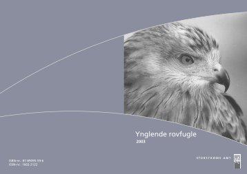 Ynglende rovfugle i Storstrøms Amt 2003 - danmarksrovfugle.dk
