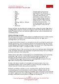 Miljøvenlig rustbeskyttelse af jern - Center for Bygningsbevaring - Page 2