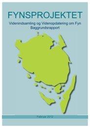 Fynsprojektet - baggrundsrapport - Svendborg kommune
