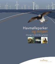 Havmølleparker og miljøet. Erfaringer fra Horns Rev og Nysted