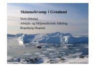 Skimmelsvamp i Grønland