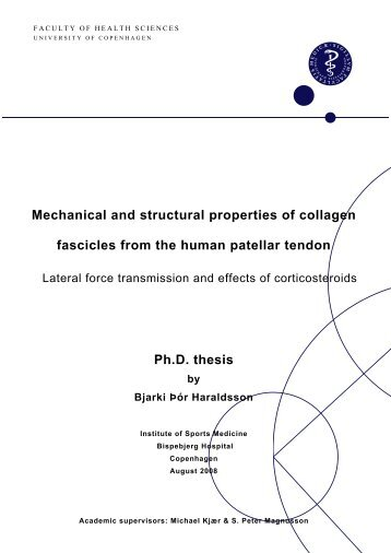 Mechanical and structural properties of collagen fascicles ... - ISMC