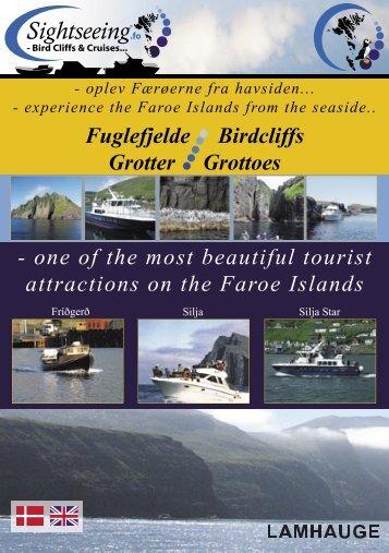 experience the Faroe Islands - Vestmannabjørgini