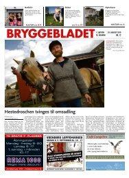 Hestedroschen tvinges til omsadling - Bryggebladet