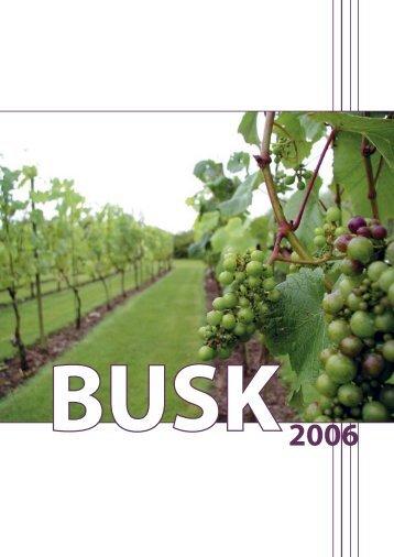 Busk2006 - BUSK gudstjenester