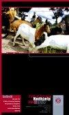 Årsberetning 2006 (1,18 MB) - Folkekirkens Nødhjælp - Page 2