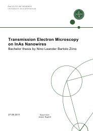 Transmission Electron Microscopy on InAs Nanowires - Niels Bohr ...