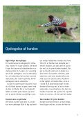 Opdragelse af hunden - Kennel Netesminde - Page 3