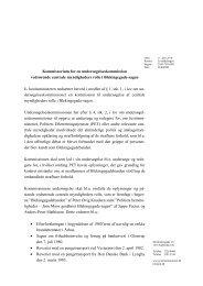 Kommissoriet i pdf format - Justitsministeriet