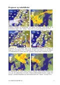 Meteorologiske forhold kapflyvning fra Sverige - Dansk Brevduesport - Page 5