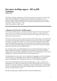 Den større skriftlige opgave – Hf2 og HfE - Turboweb.dk