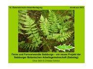 Farne und Farnverwandte Salzburgs – ein neues ... - Haus der Natur