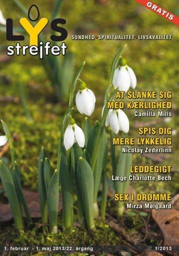 Download LYS-strejfet 1/2013 - LYS-strejfet.dk