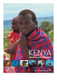 Kenya - naturforvaltning nær Ækvator - Dansk Ornitologisk Forening
