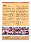 Kenya - naturforvaltning nær Ækvator - Dansk Ornitologisk Forening - Page 2
