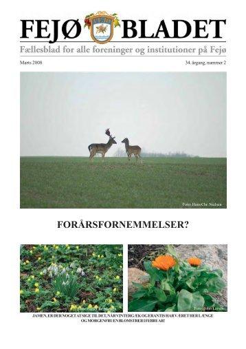 Fejoe-Bladet, 2008, nr. 2 - Fejø
