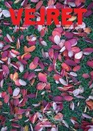 Nr. 4 - 29. årgang November 2007 (113)