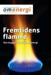 temanummer om gas 2010 - Energinet.dk