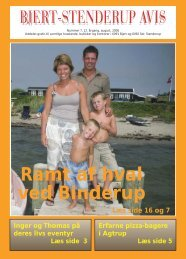 august 06 - Bjert Stenderup Net-Avis