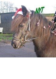 December 2007 - Tvistur